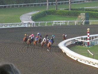 2009 Breeders' Cup Classic - Zenyatta (rider with turquoise cap) saves ground around the far turn