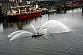 Fireboat shows off, at dusk -e.jpg