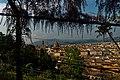 Firenze - Florence - Giardino Bardini - View North on Torre di Arnolfo & il Duomo.jpg