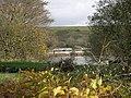 Fish Ponds - geograph.org.uk - 77127.jpg