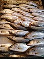 Fish in Xiangshang Market.jpg
