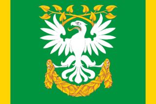 Флаг Пискарёвки