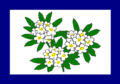 Flag of West Virginia (1905–1907).png
