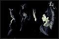 Flamenco-bailarina7.jpg