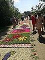 Flower carpets for Corpus Christi in Spycimierz, Gmina Uniejów.jpg