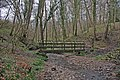 Footbridge in Mire Wood - geograph.org.uk - 378511.jpg