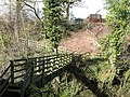 Footbridge over Rookhope Burn - geograph.org.uk - 728464.jpg