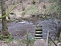 Footpath over stepping stones across River Rivelin - geograph.org.uk - 1760867.jpg