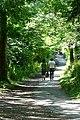 Footpath through School Green - geograph.org.uk - 1379595.jpg