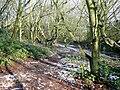 Footpath through woodland, Colton Hills, Wolverhampton - geograph.org.uk - 1634450.jpg