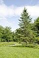 Forest Park, Springfield, MA 01108, USA - panoramio (63).jpg