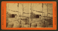 Formation at Mammoth Springs, Yellowstone National Park, from Robert N. Dennis collection of stereoscopic views.png