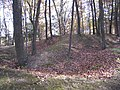 Fort Mill Ridge Civil War Trenches Romney WV 2008 10 30 22.JPG