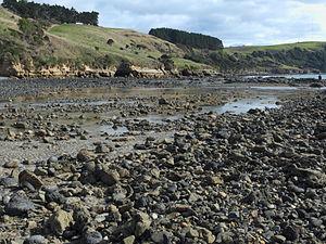 Wynyard, Tasmania - Location of the tidal fish traps at Freestone Cove