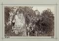 Fotografi av Bonchurch. Isle of Wight, England - Hallwylska museet - 106694.tif