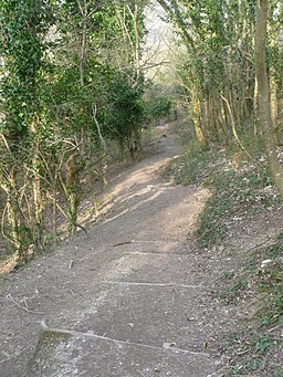 Freshwater, steps down from Tennyson Down - geograph.org.uk - 1223461