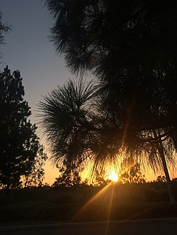 Fullerton, CA, USA - panoramio - Sergei Gussev (3)