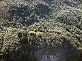 Furnes2 ved Sunnylvsfjorden.jpg