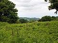 GOC Berkhamsted & Frithsden 009 Ashridge Estate (28145066700).jpg