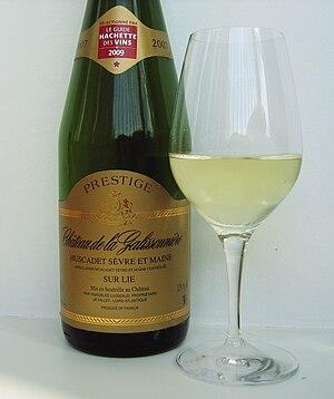 Muscadet - A Muscadet-Sèvre et Maine sur lie wine