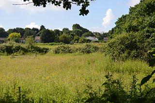Garrolds Meadow