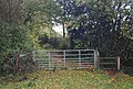 Gate and stile on the 1066 Country Walk - geograph.org.uk - 1577343.jpg