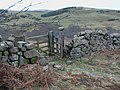 Gate in drystane dyke at north end of Heddon Wood - geograph.org.uk - 1209196.jpg