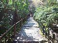 Giô-ji Buddhist Temple - Road approaching a temple.jpg