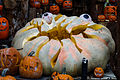 Giant Googly Eye Pumpkin (22372742366).jpg