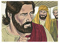 Gospel of Matthew Chapter 13-21 (Bible Illustrations by Sweet Media).jpg