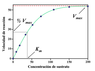 Pharmacokinetics - Graph that demonstrates the Michaelis–Menten kinetics model for the relationship between an enzyme and a substrate: one of the parameters studies in pharmacokinetics, where the substrate is a pharmaceutical drug.