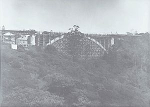 Grafton Bridge - Wooden falsework under the new bridge in 1909.