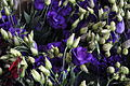 Granville Island - flowers for sale 01.jpg