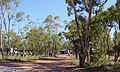 Grawin Opal Miners Camps - panoramio.jpg