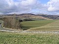 Grazing in the Ettrick Valley - geograph.org.uk - 352782.jpg