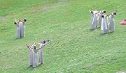 """The ceremony for the lighting of the flame is arranged as a pagan pageant, with """"priestesses"""" dancing."""