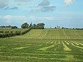 Greenan Farm - geograph.org.uk - 249795.jpg