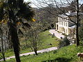 Greenway House from the woods (1).JPG