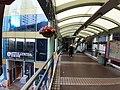HK 中環 Central 些利街 Shelley Street Mid-levels escalators February 2020 SS2 23.jpg