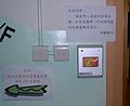 HK Li Sing Primary School 03 Octopus.jpg