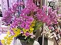 HK TKO 將軍澳廣場 Tseung Kwan O Plaza shop Grand Palace Restaurant man-made flowers May 2019 SSG 01.jpg