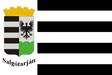 Salgótarján zászlaja