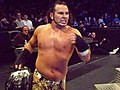Hardy with ECW title.jpg