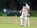 Hatfield Heath CC v. Takeley CC on Hatfield Heath village green, Essex, England 01.jpg