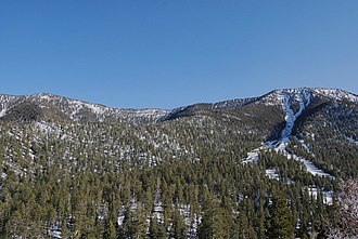 Humboldt–Toiyabe National Forest - The Humboldt–Toiyabe National Forest in the Spring Mountains