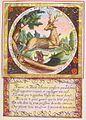 Heinsius Emblem Quaeris quid 15.jpg