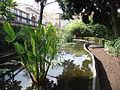 Hijuela del Botánico 2.JPG