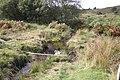 Holne Moor Leat - geograph.org.uk - 617031.jpg