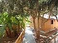 Hotel Kolymbia Sun Rhodos - panoramio.jpg