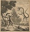 Houghton Swi 607.23 - Ouresiphoítes helveticus, fig X.jpg